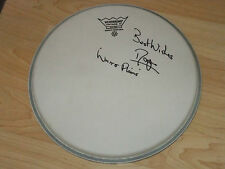 ROGER HILLS WHITE PLAINS  SIGNED DRUMHEAD