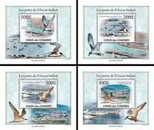 Comoros Comores 2009 MNH Ports of Indian Ocean 4x 1v Deluxe S/S Birds Stamps