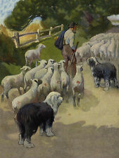 OLD ENGLISH SHEEPDOG DOGS AND SHEEP IN COUNTRY LANE DOG GREETINGS NOTE CARD