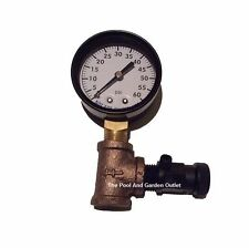 Swimming Pool Spa Filter 0-60 Pressure Gauge & Air Release/Relief Valve Parts