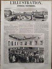 L'ILLUSTRATION 1851 N 419 VENTE DES CHEVAUX DE M. LE PRESIDENT DE LA REPUBLIQUE