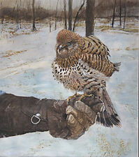 Original watercolor painting of Hawk on Gloved Hand in Winter Setting