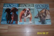 1955 Sports Illustrated THE WESTMINSTER DOG SHOW 130+ Photos DOG POSTER Set of 3