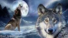 "Wolf With Moon Animal Photo Fridge Magnet 2""x3"" Collectibles"