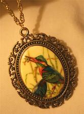 Swirled Rim Decal Cameo Colorful Bird with Fish Silvertone Pendant Necklace