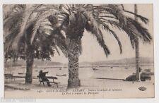 """CPA """" SANARY - Station hivernale et balnéaire - Le Port à travers les Palmiers"""