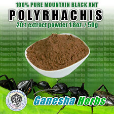 100% PURE & WILD  Mountain Ant  Vicina Roger Polyrhachis 20:1 Extract powder 50g