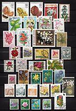 101370/ Blumen und Pflanzen - schönes Lot - o - nichts gerechnet - siehe scan