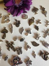 15 AUTUMN WINTER FALL Mixed charms silver bronze acorn squirrel leaves tree