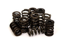 Piper Double Valve Spring Kit for Vauxhall Opel Corsa B 2.0L X20XEV - VDSECO