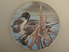 N. PINTAILS collector plate ROD LAWRENCE Waterfowl of America NATURE'S HERITAGE