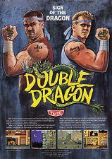 Incorniciato locale Master System Gioco Print – DOUBLE Dragon (PICTURE POSTER NES ART)