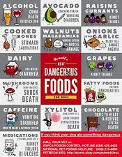 """MOST DANGEROUS FOODS FOR DOGS POSTER ( 8 1/2"""" x 11"""" ) - MADE IN USA - IN COLOR"""
