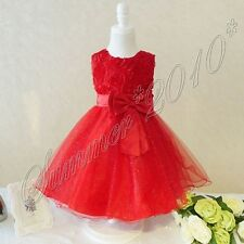 Girls Party/Flower/Formal/Wedding/Princess/Prom/Bridesmaid/Christening Dress New