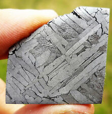 15.1 gram Etched Toluca Meteorite Slice -  from Mexico