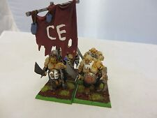 Warhammer Ogre Kingdom Bulls Ogors Painted army lot