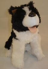 Small Husky Plush Dog Doggie Puppy Stuffed Animal 10p34 Toy Lovey Cuddly Sweet