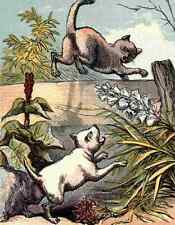 A4 Photo Naughty Puppies 1870 Dog chasing cat Print Poster