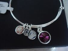 Alex and Ani February Birthstone AMETHYST Silver Charm Bangle NWT Card & Box