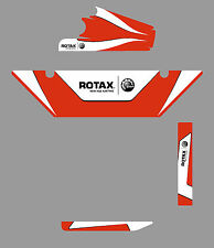 Birel ART EUROPEAN STYLE DD2 RADIATOR STICKER KIT - ROTAX - KARTING