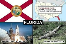 SOUVENIR FRIDGE MAGNET of THE STATE OF FLORIDA USA