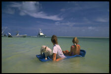 695074 Dog And Women Float At Ocean Sandbar Florida Keys Florida A4 Photo Print