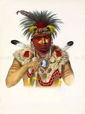 PAINTINGS NATIVE AMERICAN CHIEF FOX FEATHER FUR INDIAN ART POSTER PRINT LV6918
