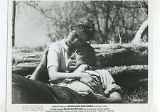 A Walk In The Spring Rain Anthony Quinn Ingrid Bergman !970 press photo J  MBX65