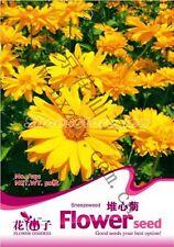 1 Bag 50 Seeds Sneezeweed Helenium bigelovii Flower Seed A131