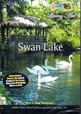 Living Art SWAN LAKE: VIRTUAL NATURE IN THE WOODS MOOD ENHANCING RELAXATION! NEW
