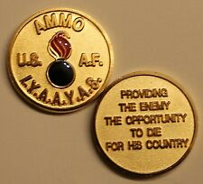 Ammo IYAAYAS Provide Enemy Air Force Challenge Coin     G_RdS