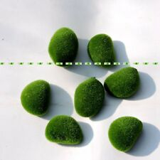 8pcs 5CM Foam Artificial Bryophytes Grass Plant Fake Moss Rock Fuzzy Stone Green