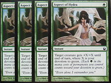 XXX 4x ASPECT OF HYDRA englisch born of the gods (devotion green) NM/MINT XXX