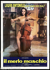 IL MERLO MASCHIO MANIFESTO CINEMA LAURA ANTONELLI EROTICO 1973 MOVIE POSTER 2F
