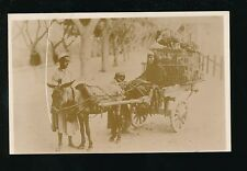 Egypt Animals DONKEY transport with cart carrying birds c1920/30s? RP PPC