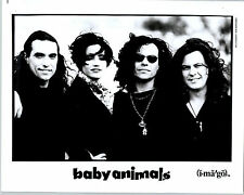 RARE Original Press Photo Baby Animals 90's Hard Rock Band Suze DeMarchi