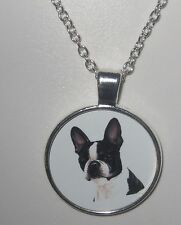 Boston Terrier Hund dog Halskette Necklace -EMBG1 - NEU!