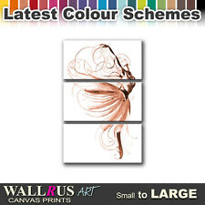 Ballet Dancer PERFORMING  Canvas Print Framed Photo Picture Wall Artwork WA