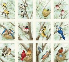 Beautiful Birds Panels Cotton Quilting Fabric Elizabeth's Studio (12 Panels)