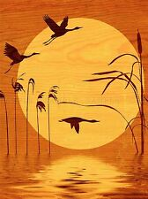 WOOD SILHOUETTE DUCK HERON FLYING SUN ILLUSTRATION PHOTO PRINT POSTER BMP810A