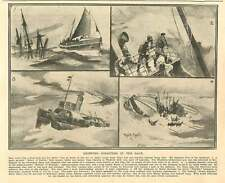 1908 Shipping Disasters Laytown Grimsby Dover Harbour Newquay