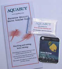 Brine Shrimp Eggs and Salt packs for 2 litre - 1 pack - Good Betta Live Food
