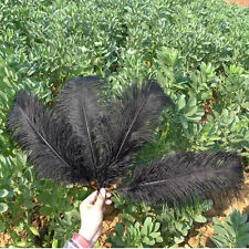 "Wholesale 10/50pcs High Quality Natural OSTRICH FEATHERS 15-55cm/6-22"" inch"
