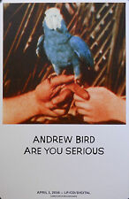 ANDREW BIRD, ARE YOU SERIOUS POSTER (V6)