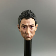 1/6 Scale Andy Lau Head Sculpt Lau Tak Wah Headplay Infernal Affairs