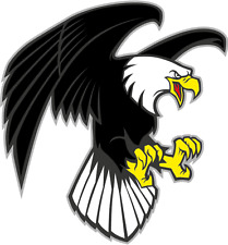 "Cartoon Angry Eagle Mascot Wild Bird Car Bumper Sticker Decal 5"" x 5"""