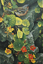 "Robert Bateman - ""On the Garden Wall"" limited edition print"