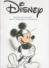 ART THERAPIE DISNEY MICKEY AND FRIENDS TOUT L'UNIVERS A COLORIER coloriage