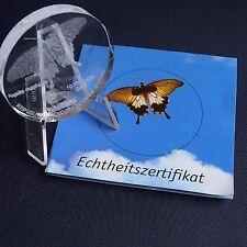 Glasmünze Kongo 10 Francs 2003 Schmetterling Glas Gedenkmünze + Zfk