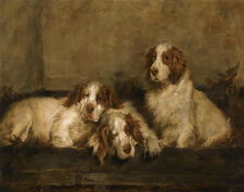 Emms John Clumber Spaniels In A Kennel Canvas 16 x 20 #5707